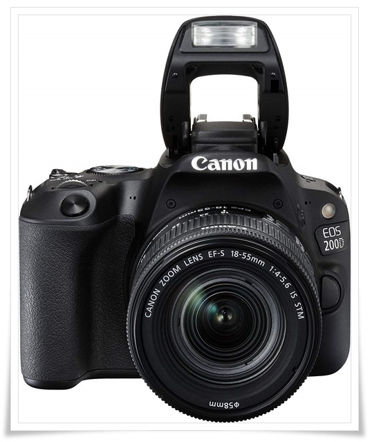 Canon EOS 200D 24.2MP Digital SLR Camera - best dslr camera in india under 50000