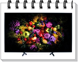 Panasonic 50 Inches Full HD LED Smart TV TH-50FS600D