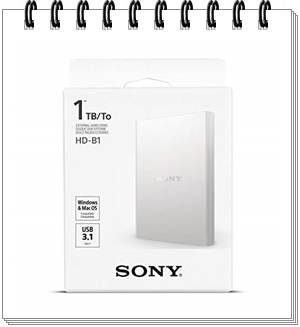 Sony 1TB HDD White