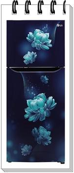 LG 260 L 3 Star GL-T292SBC3 Inverter Frost-Free Double Door Refrigerator